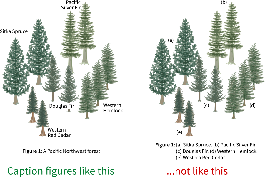 Two contrasting examples of how to caption a scientific figure. It is better to explain the high-level overview, not the small details